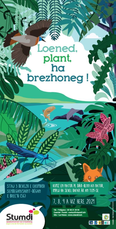 Stumdi centre de formation langue bretonne - Yann Champeau