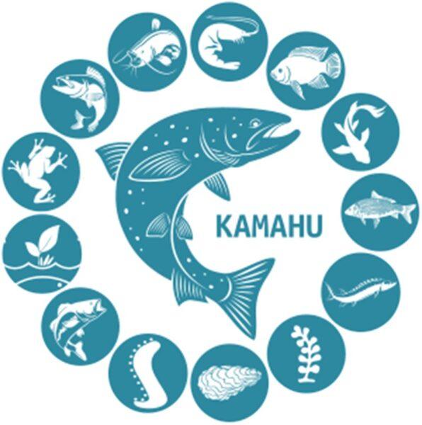 Kamahu - Stumdi, centre de formation pour adultes en langue bretonne
